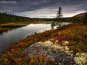 Berton Lake, NB.