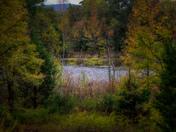 Fall on Fane Creek