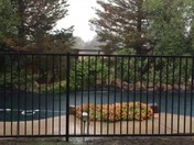 Pouring in Rio Vista