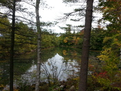 Fall in the lakes region