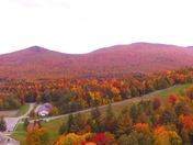 Fall Foliage Drone Video
