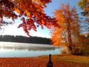 Townhouse Pond Milton, NH