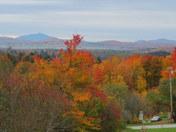 Autumn in Franklin