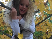 Keira in a tree, fall leaves