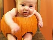 Cute Little Jack-o-Lantern