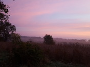 A foggy pink sunrise in Glenwood this morning. No filters