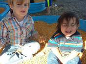 My Grandsons trip to the pumpkin farm.