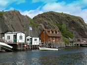 Quidi Vidi Across the Gut