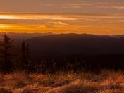 Sunrise on The Heather Trail