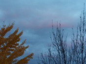 Pink in the clouds