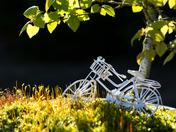 Bonzai Bike