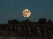 Beaver Moon Over Farm