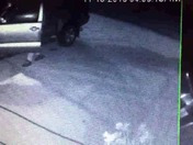 A group of guy tried to get in unlocked  car in the middle of the night  stolen
