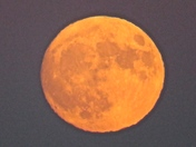 SUPERMOON RISE OVER NEPONSET RIVER