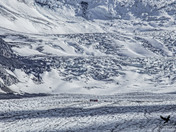 Bus Ride on the Glacier