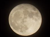 Super Moon 11/14/16
