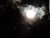 The Peeping Super Moon