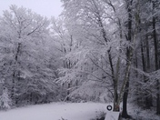 Winter Wonderland b4 Jillie's birthday