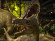 Beat It, Boys, It's the Albertosaurus! (#1)
