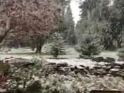 Snowing in Camino