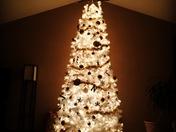 Begining to look like Christmas