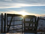 Prairie Fence in Winter