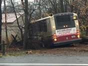 Transit Bus Accident