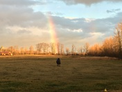 Rosa at end of rainbow