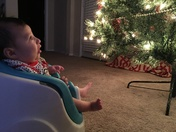 Piper Brynn Perez' FIRST CHRISTMAS