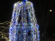Taylor Park Fountain