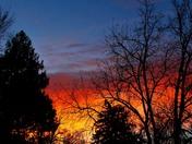 Monday morning back yard sunrise