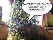 Jemma Girl Santa Stress'n