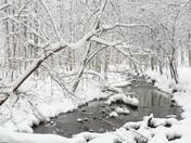 Winter scenic beauty!