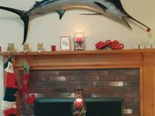 George the Christmas Fish says Merry Merry!!
