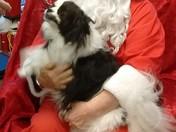 Zachary visiting Santa