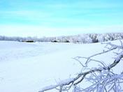 Snow scenery in Prairie