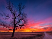 Beautiful December Sunset