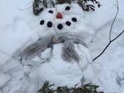 Fallen snowman