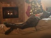 Garrett's Christmas morning!