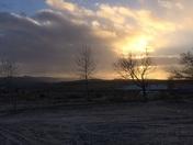 Morning in bibo NM
