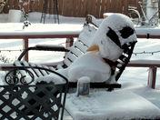 It's Frosty in Silver City