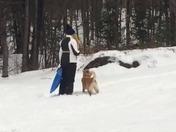 Roxy loves the snow