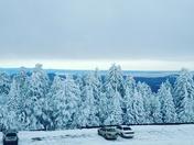 Beautiful cedar crest