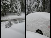 Snow 1/3/17