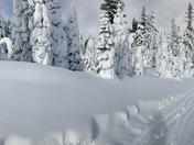 Great ski day