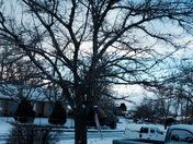 Snow in Albuquerque