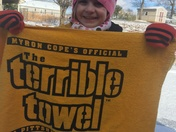 Go Steelers and Tigers