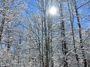 Sun & Snow in the South.
