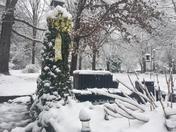 Snow 2017 Travelers Rest, SC