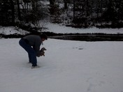 Dachshound in Oconee County snow